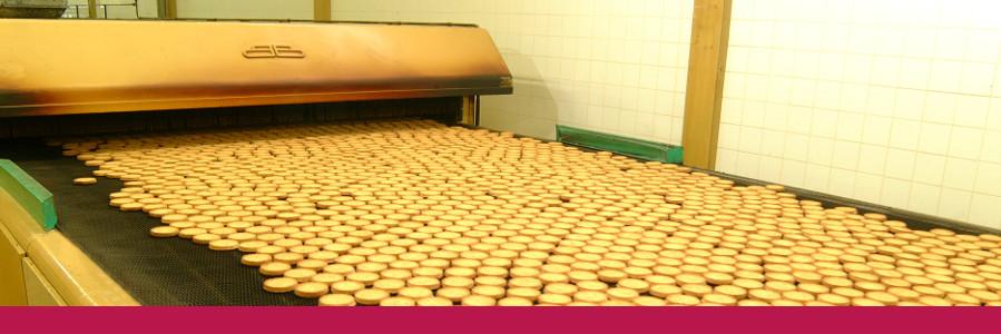 slide-biscuitrusk-alt